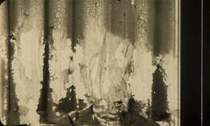 Reticulation Emulsion lift